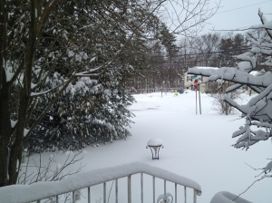 12 inches of snow does not make me happy. (c) Stacey Cooper